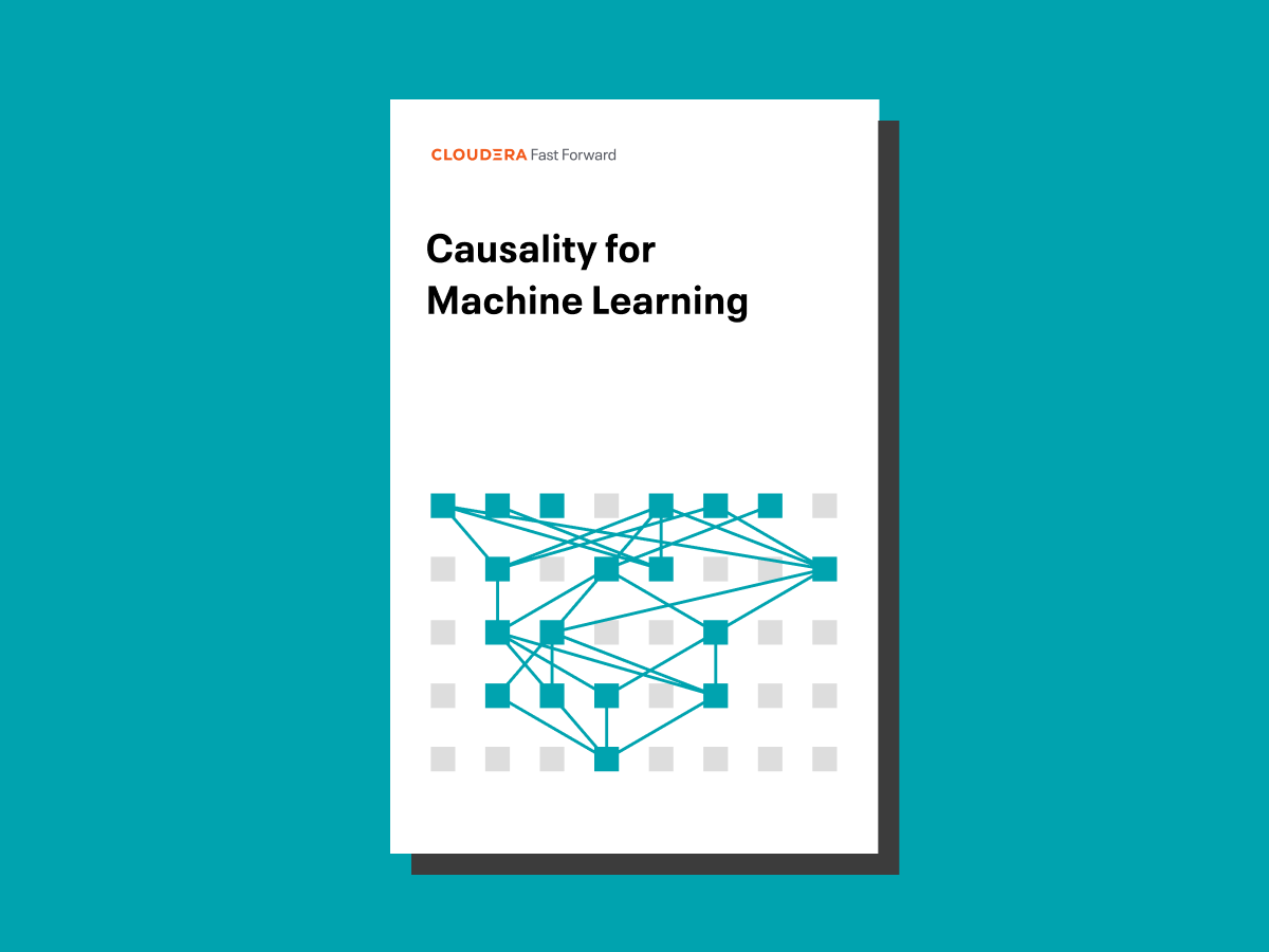 Causality for Machine Learning report cover